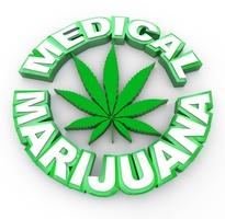 Medical Marijuana Cannabis Legalisation
